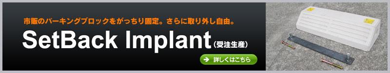 SetBack Implant